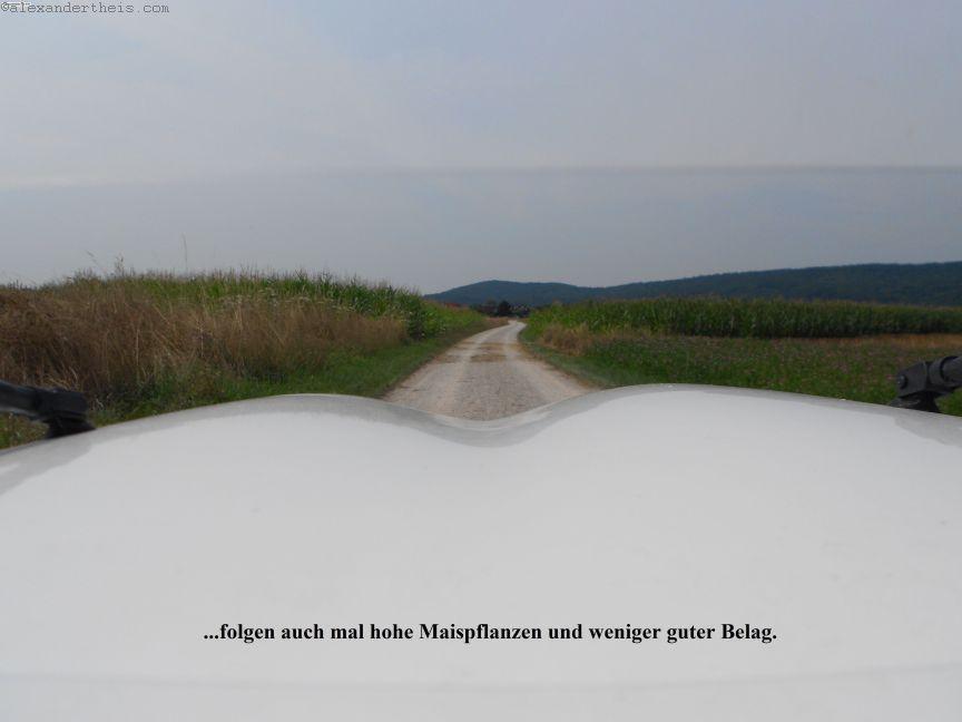 DSCN0835_klein_klein