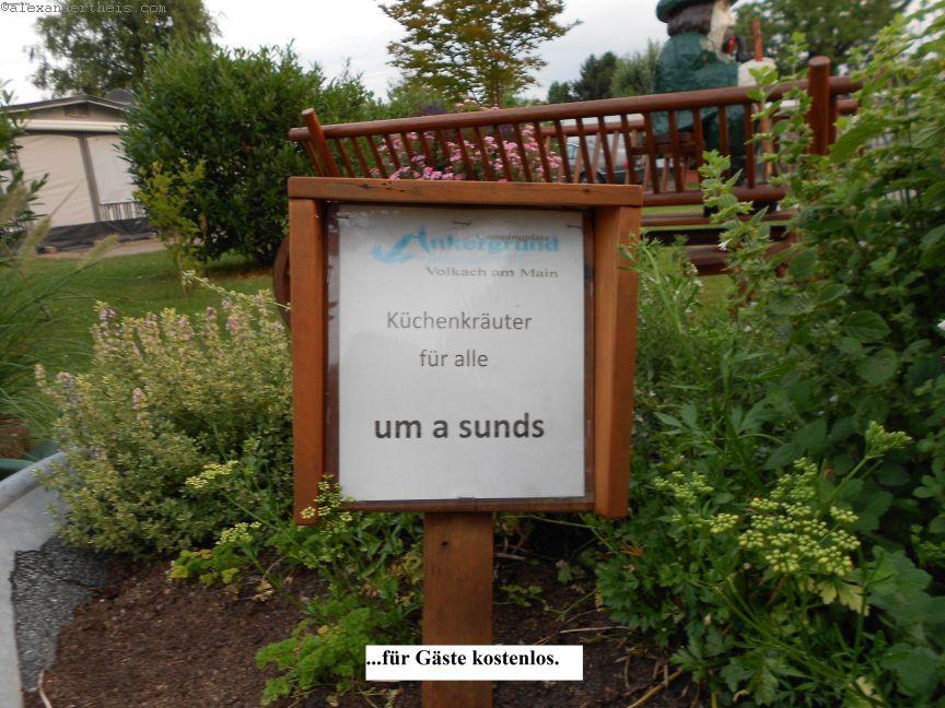DSCN0895_klein_klein