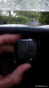 orca_9000km
